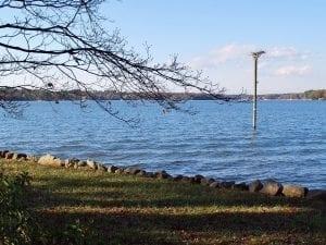 Osprey Nest Lake Norman